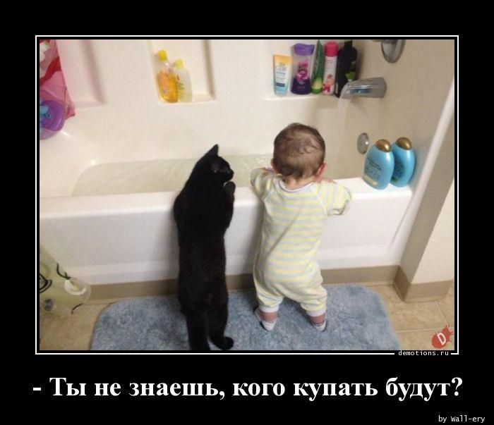 - Ты не знаешь, кого купать будут?