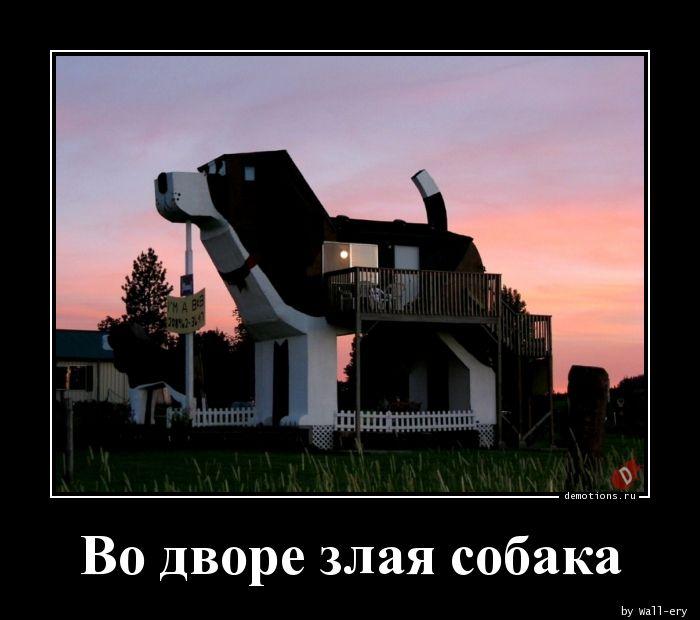 Во дворе злая собака