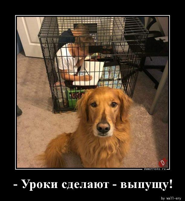- Уроки сделают - выпущу!