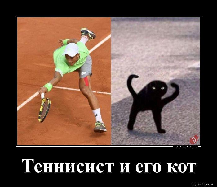 Теннисист и его кот