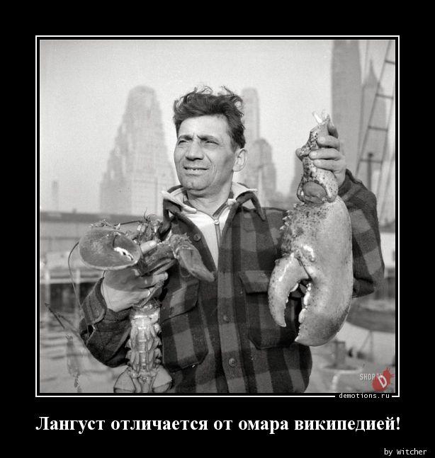 Лангуст отличается от омара википедией!