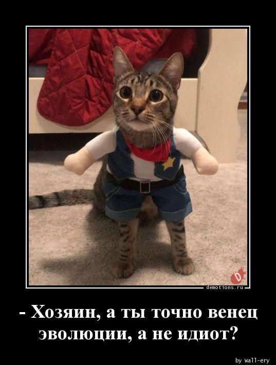 - Хозяин, а ты точно венец эволюции, а не идиот?