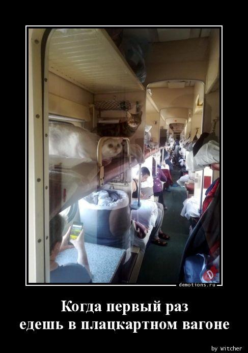 Когда первый раз  едешь в плацкартном вагоне