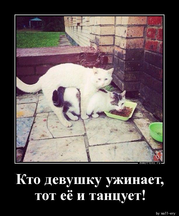Кто девушку ужинает, тот её и танцует!