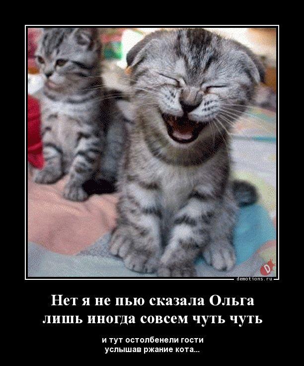 Нет я не пью сказала Ольга лишь иногда совсем чуть чуть