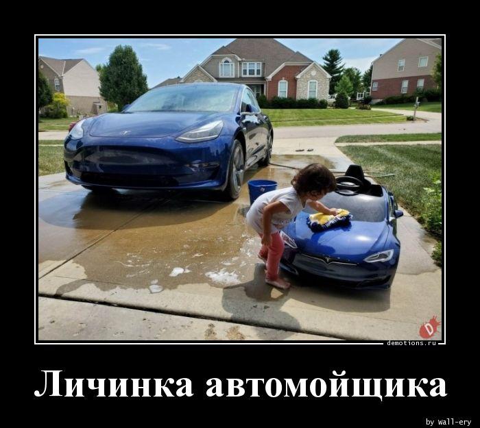 Личинка автомойщика