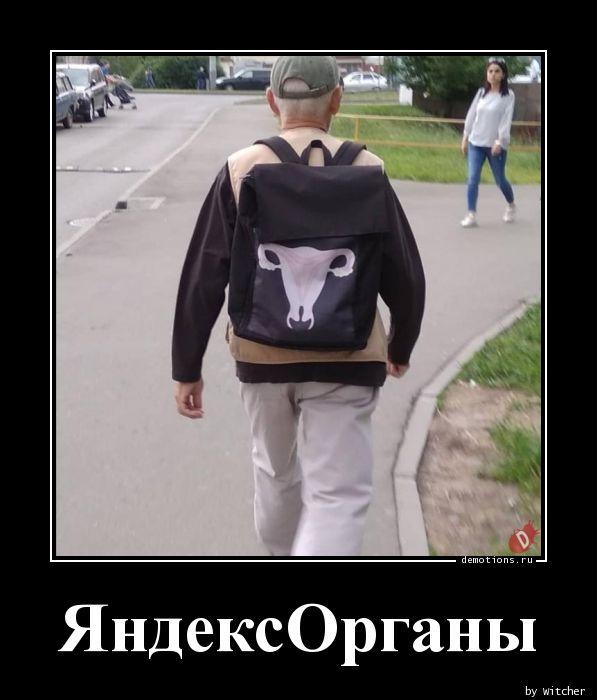 ЯндексОрганы