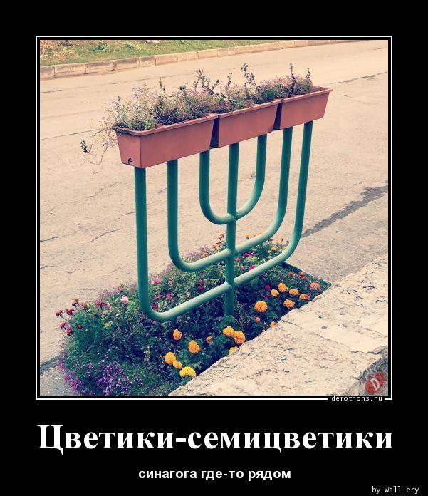 Цветики-семицветики