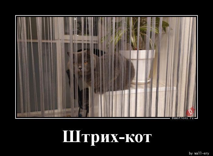 Штрих-кот