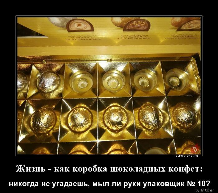 Жизнь - как коробка шоколадных конфет:
