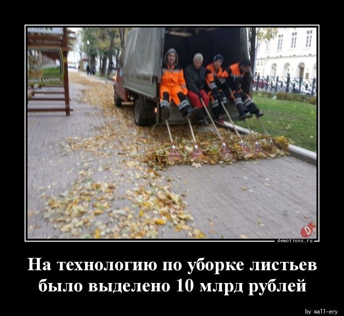 На технологию по уборке листьев было выделено 10 млрд рублей