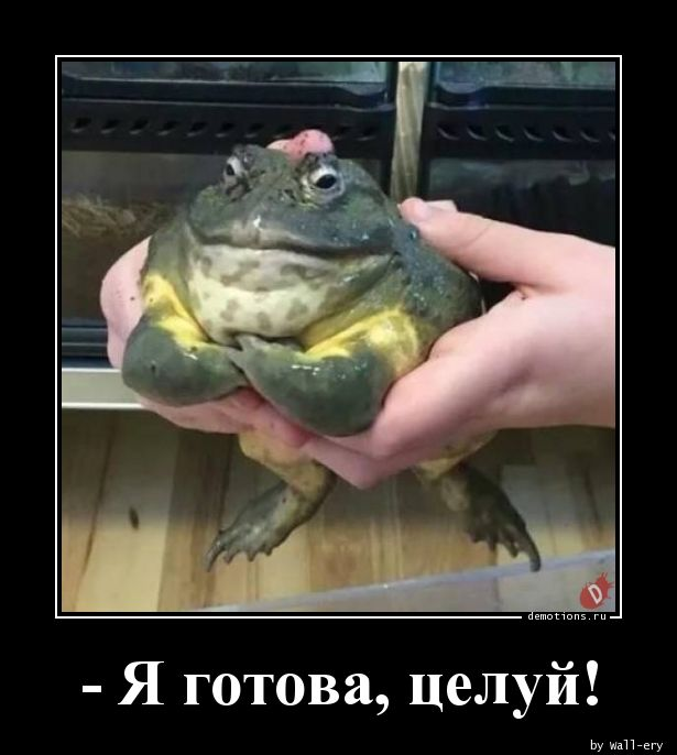 - Я готова, целуй!