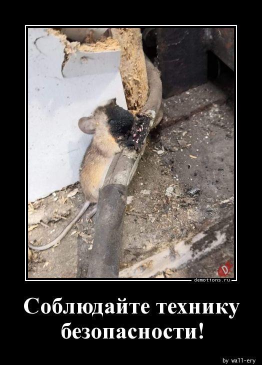 Соблюдайте технику безопасности!