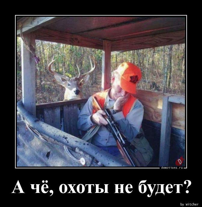 А чё, охоты не будет?