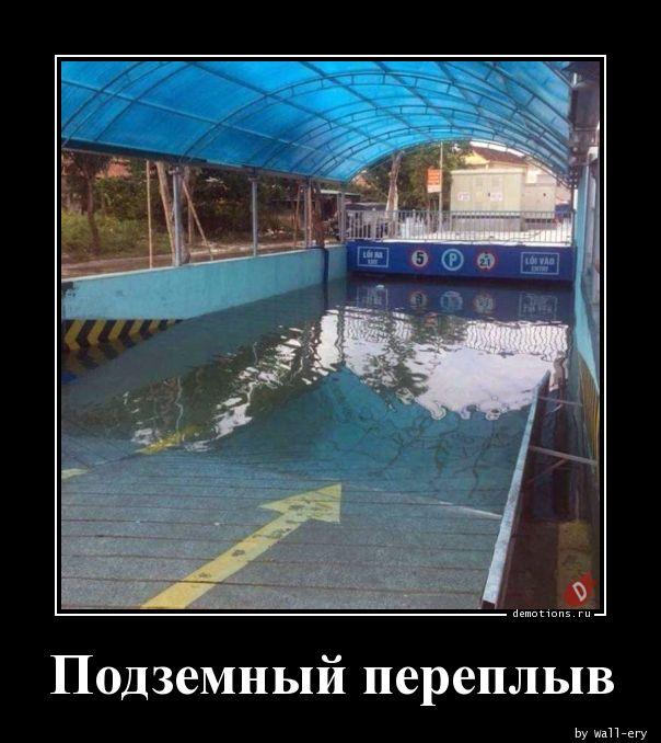 Подземный переплыв