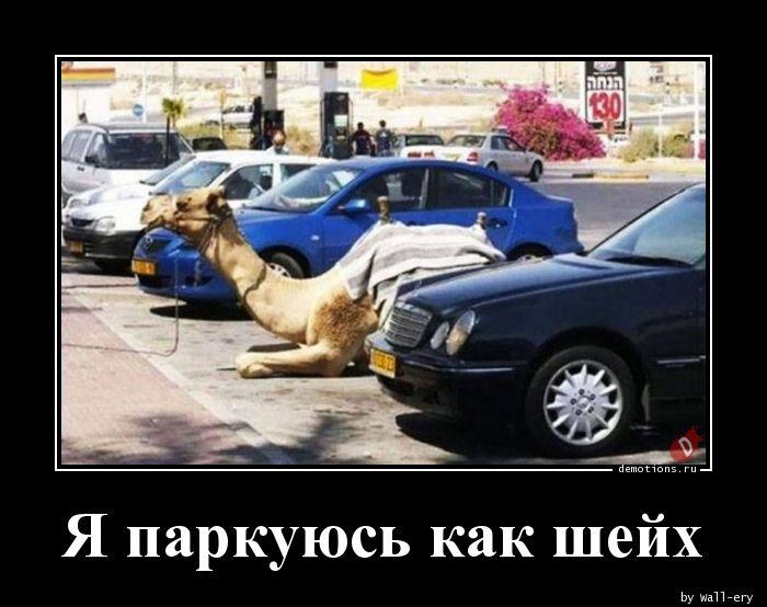 Я паркуюсь как шейх