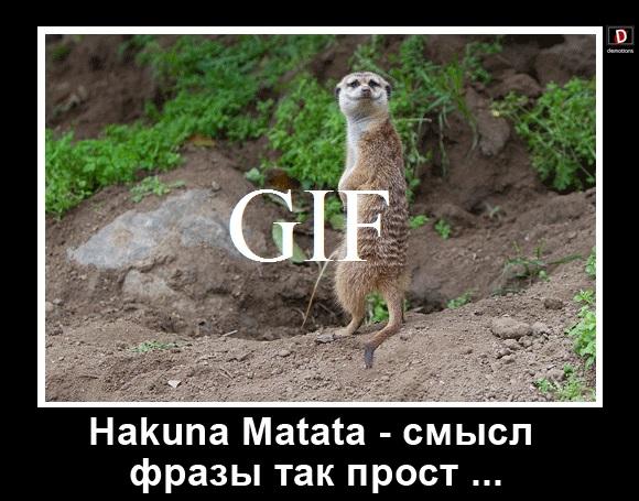 Hakuna Matata - смысл фразы так прост ...