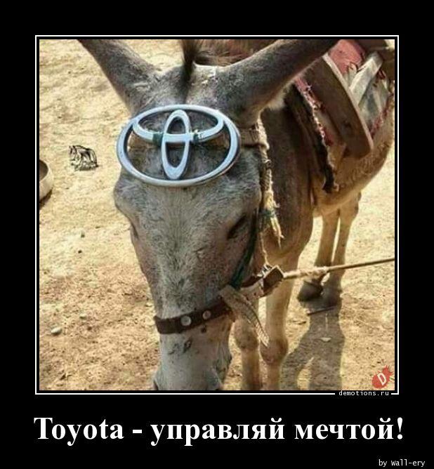 Toyota - управляй мечтой!