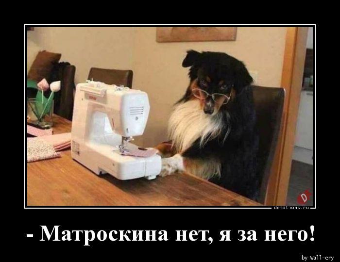 - Матроскина нет, я за него!