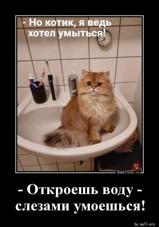 - Откроешь воду - слезами умоешься!