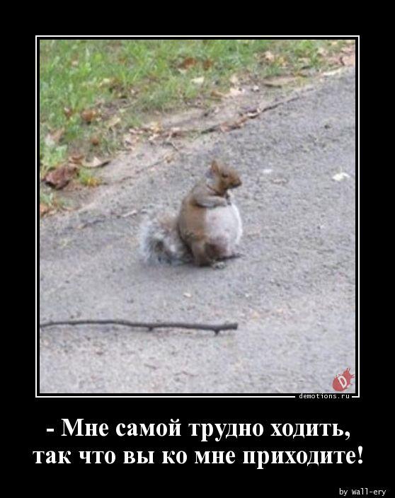 - Мне самой трудно ходить, так что вы ко мне приходите!
