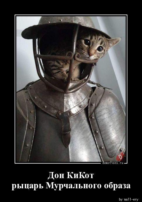 Дон КиКот рыцарь Мурчального образа
