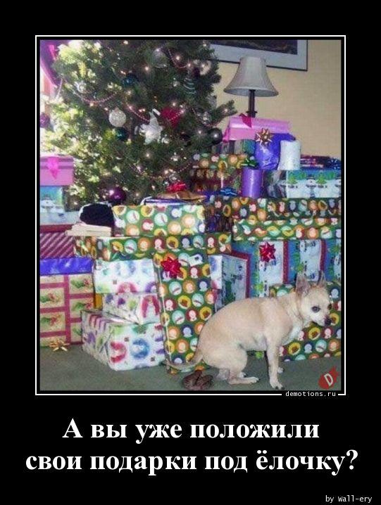 А вы уже положили свои подарки под ёлочку?