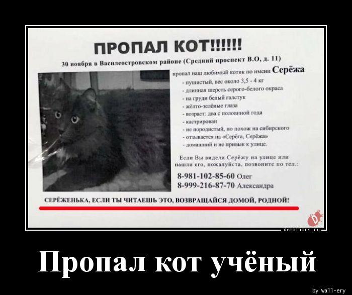 Пропал кот учёный