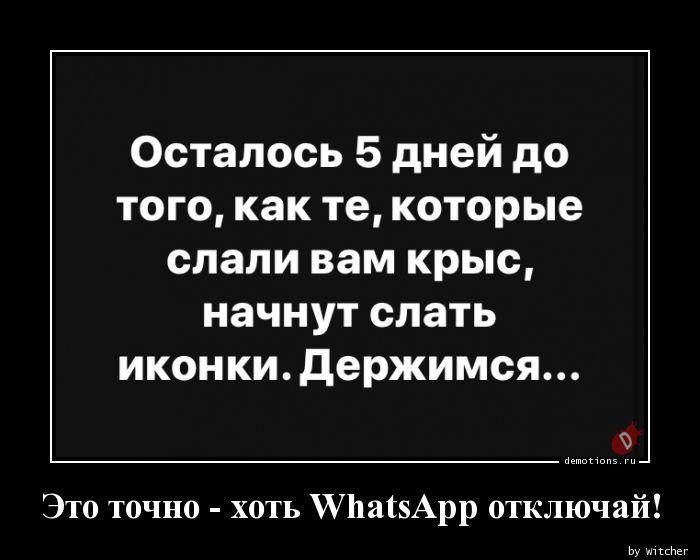 Это точно - хоть WhatsApp отключай!