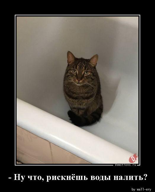 - Ну что, рискнёшь воды налить?