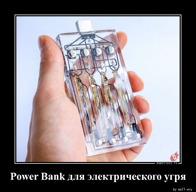 Power Bank для электрического угря