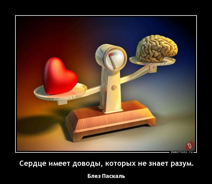 Сердце имеет доводы, которых не знает разум.