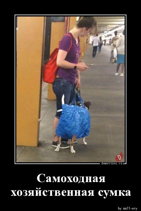 Самоходная хозяйственная сумка