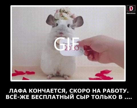 ЛАФА КОНЧАЕТСЯ...