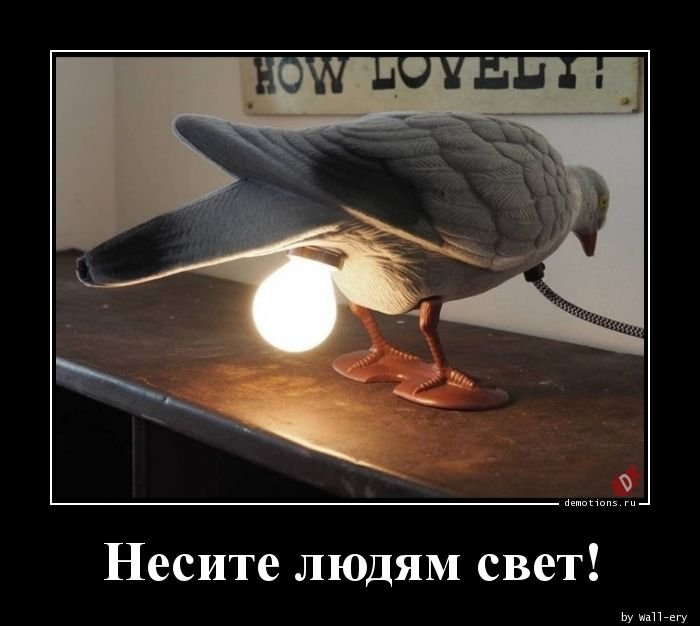 Несите людям свет!