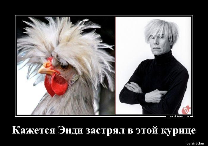 Кажется Энди застрял в этой курице