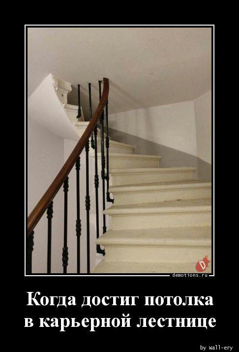 Когда достиг потолка в карьерной лестнице