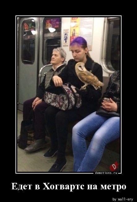 Едет в Хогвартс на метро