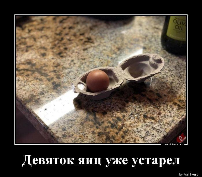 Девяток яиц уже устарел