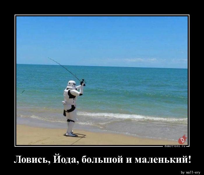 Ловись, Йода, большой и маленький!