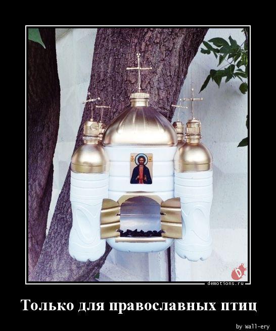Только для православных птиц