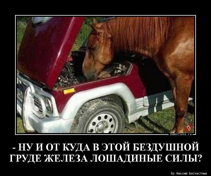 - НУ И ОТ КУДА В ЭТОЙ БЕЗДУШНОЙ  ГРУДЕ ЖЕЛЕЗА ЛОШАДИНЫЕ СИЛЫ?