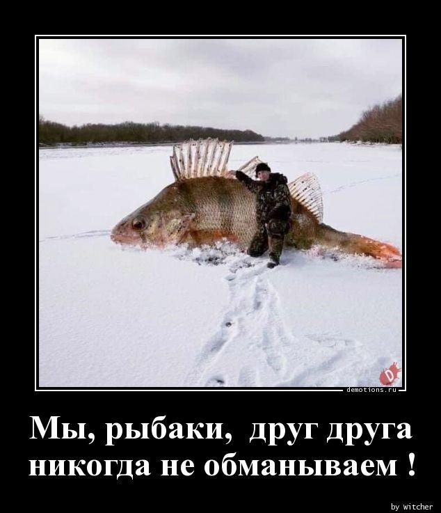 Мы, рыбаки,  друг друга  никогда не обманываем !