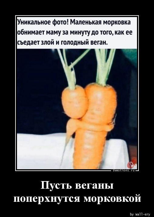 Пусть веганы поперхнутся морковкой