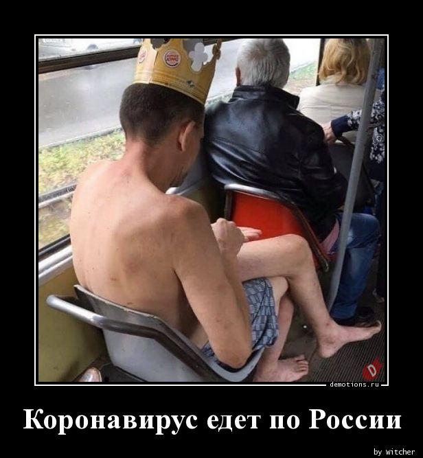 Коронавирус едет по России