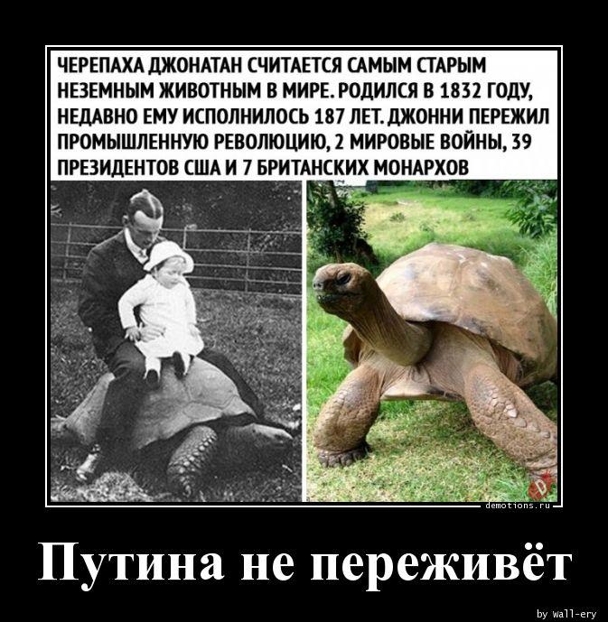 Путина не переживёт
