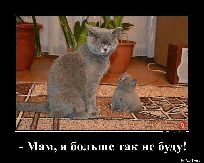 - Мам, я больше так не буду!