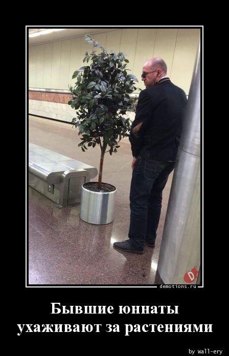 Бывшие юннаты ухаживают за растениями