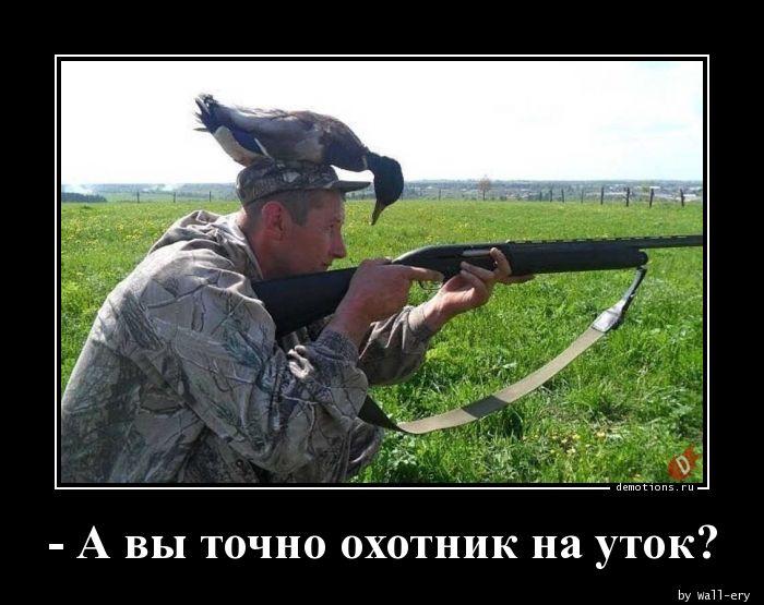 - А вы точно охотник на уток?