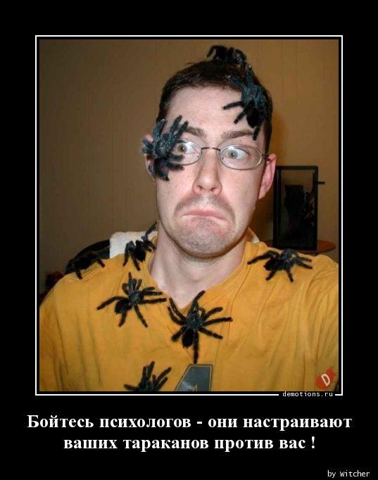 Бойтесь психологов - они настраивают  ваших тараканов против вас !